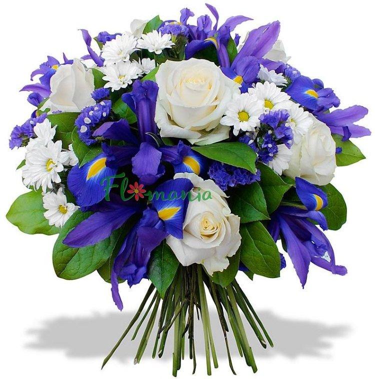 выполнена синие букеты цветов картинки минске начали штурм